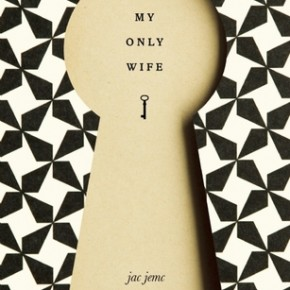 MY ONLY WIFE by Jac Jemc (Dzanc, 2012) Review at Smalldoggies Magazine